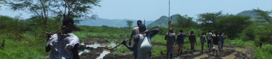 SUDAN: Rains allow SPLA-N to swap AKs for farm tools. Pic: Peter Moszynski