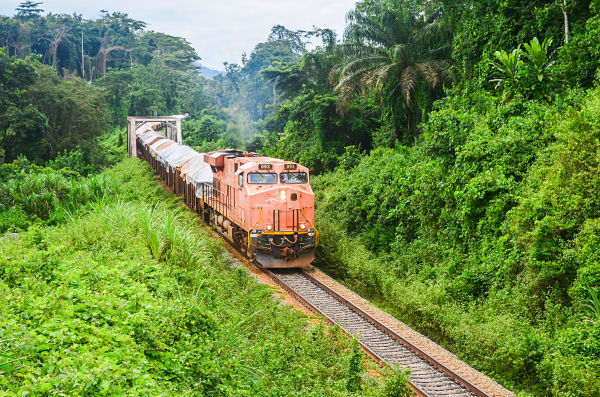 A freight train from ArcelorMittal carrying iron ore to the port of Buchanan. Pic: jbdodane / Alamy Stock Photo