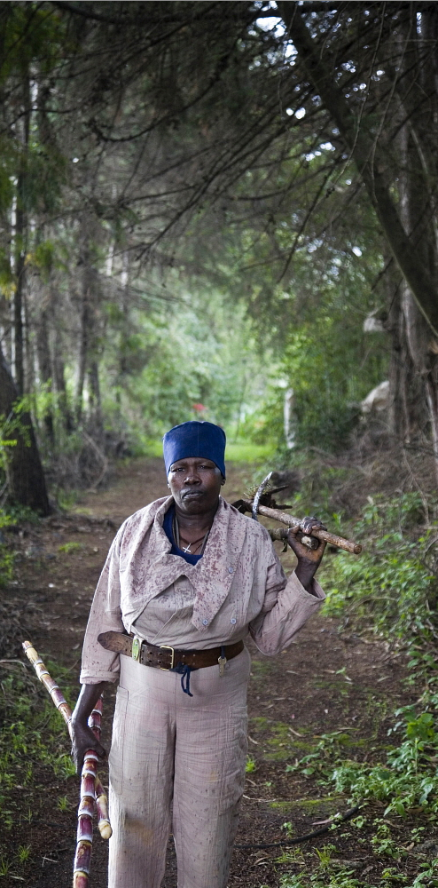 A nun on her way back from harvesting sugar cane in the grounds of the Sebeta Getesemani Nunnery, which is home to 105 nuns and over 200 orphans. Petterik Wiggers / Panos