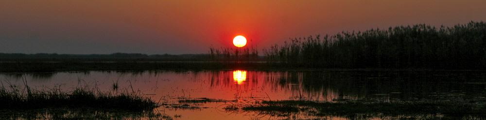 The sun rises over the wetlands of Lake Bangweulu, Zambia. Credit: Kieran Dodds / Panos