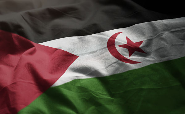 Sahrawi flag. Pic: Pic: natanaelginting / stock.adobe.com